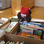 Lindesnes bibliotek