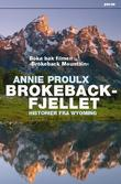 &#34;Brokeback-fjellet - historier fra Wyoming&#34; av Annie Proulx