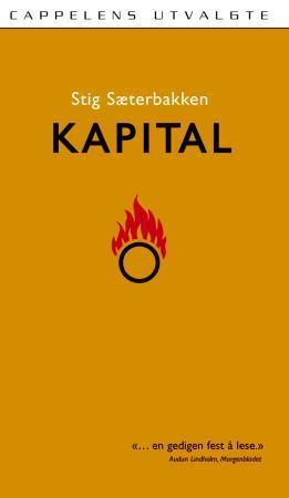 &#34;Kapital - roman&#34; av Stig Sterbakken