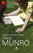 &#34;Utsikten fra Castle Rock&#34; av Alice Munro