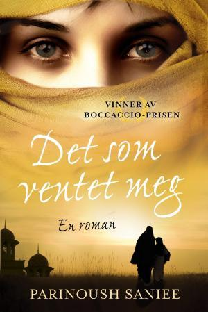 &#34;Det som ventet meg&#34; av Parinoush Saniee