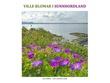 """""""Ville blomar i Sunnhordland"""" av Jan Rabben"""